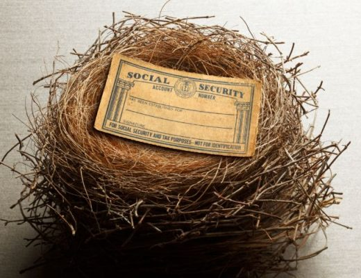 Social Security card laying in a nest
